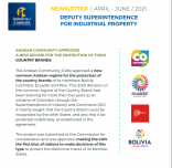 Newsletter Deputy Superintendence for Industrial Property