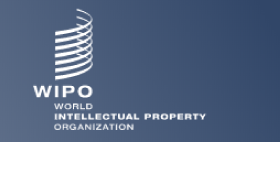 WIPO enlace internacional