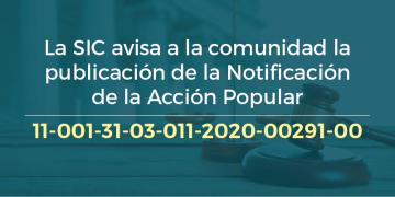 Acción Popular No. 11-001-31-03-011-2020-00291-00
